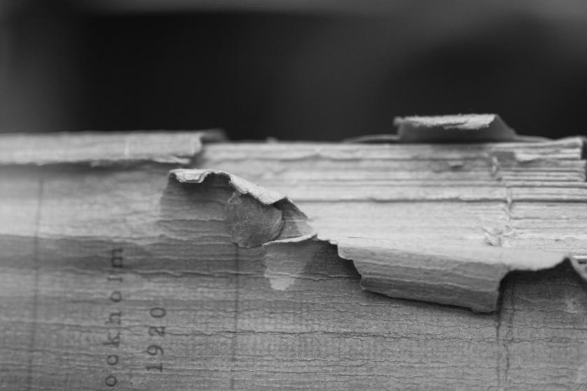 oldbook (1 of 1)