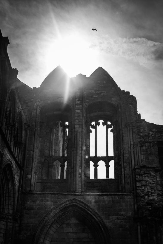 abbey (1 of 1)-2